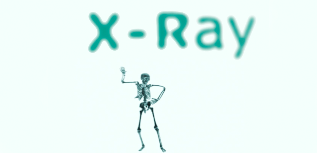 http://www.x-ray.nl/uploads/images/banner_xray.png